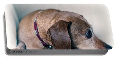 Brownie The Dachshund Portable Battery Charger