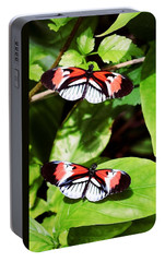 Butterflies Portable Battery Charger by Sandy Taylor