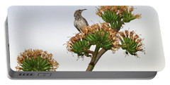 Cactus Wren Portable Battery Charger by Elaine Malott