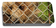Caged Bear Portable Battery Charger