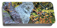 Canada Lynx Portable Battery Charger by Jack Bell