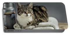 Cat Portrait Portable Battery Charger