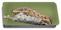 Caterpillar And Parasitic Wasp Eggs Portable Battery Charger