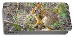 Cedar Hill Bunny Portable Battery Charger