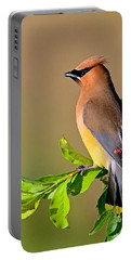 Cedar Waxwing Portable Battery Charger by Rodney Campbell