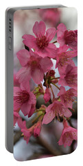 Portable Battery Charger featuring the photograph Cherry Blossoms by Pamela Walton