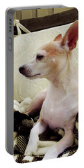 Chihuahua Chiqui Portrait 3 Portable Battery Charger