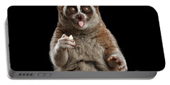 Close-up Lemur Slow Loris Isolated Black Background Portable Battery Charger