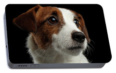 Closeup Portrait Of Jack Russell Terrier Dog On Black Portable Battery Charger by Sergey Taran