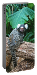 Commonmarmoset  Portable Battery Charger