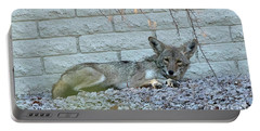 Coyote Portable Battery Charger by Anne Rodkin
