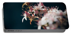 Portable Battery Charger featuring the photograph Crassula Ovata Flowers And Honey Bee  by Sharon Mau