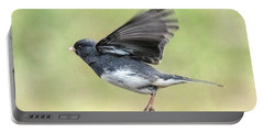 Dark Eyed Junco Flying Portable Battery Charger