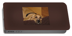 Dog Tired Portable Battery Charger by Val Oconnor