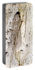Earth Mother Portable Battery Charger by Nancy Kane Chapman