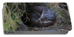 European Otter Resting Portable Battery Charger