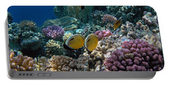 Exquisite Butterflyfish In The Red Sea Portable Battery Charger