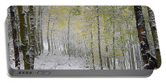 First Snow Fall Portable Battery Charger
