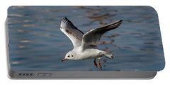 Flying Gull Portable Battery Charger