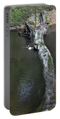 Portable Battery Charger featuring the photograph Footbridge by Skip Willits
