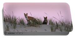 Fox And Vixen Portable Battery Charger