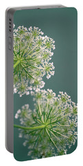 Fragile Dill Umbels On Summer Meadow Portable Battery Charger
