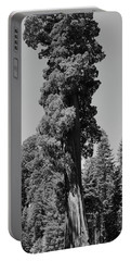 Giant Sequoia, Sequoia Np, Ca Portable Battery Charger