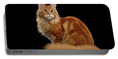 Ginger Maine Coon Cat Isolated On Black Background Portable Battery Charger