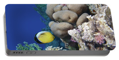 Glorious Red Sea World 3 Portable Battery Charger