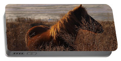 Wild Horse Of Chincoteague Portable Battery Charger