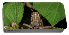 Grasshopper Portable Battery Charger