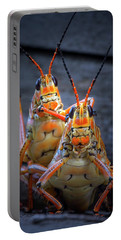 Grasshoppers In Love Portable Battery Charger