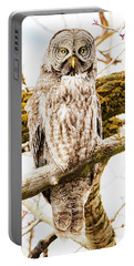 Portable Battery Charger featuring the photograph Great Gray Owl by Norman Hall