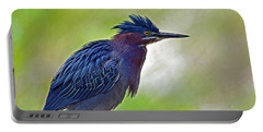 Portable Battery Charger featuring the photograph Green Heron by Rodney Campbell