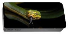 Green Tree Python. Morelia Viridis. Isolated Black Background Portable Battery Charger