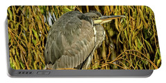 Portable Battery Charger featuring the photograph Grey Heron by Cliff Norton