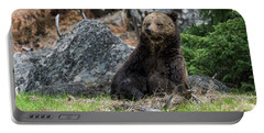 Grizzly Manor Portable Battery Charger by Scott Warner