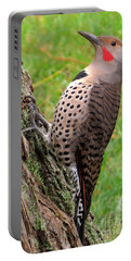 Handsome Pose Portable Battery Charger
