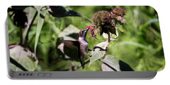 Humming Bird  Portable Battery Charger by David Stasiak