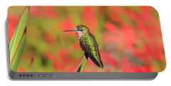 Hummingbird #5 Portable Battery Charger