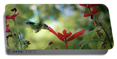 Hummingbird Delight Portable Battery Charger by Sue Stefanowicz