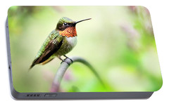 Portable Battery Charger featuring the photograph Hummingbird II by Christina Rollo