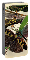 Insects, Plate-8 Portable Battery Charger