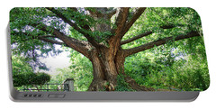 Portable Battery Charger featuring the photograph Inwood Ginkgo  by Cole Thompson