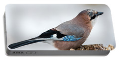 Jay In Profile Portable Battery Charger