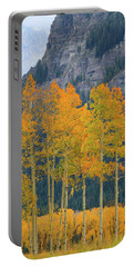 Portable Battery Charger featuring the photograph Just The Ten Of Us by David Chandler
