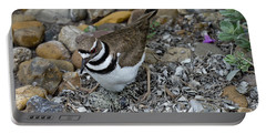 Killdeer With Eggs Portable Battery Charger