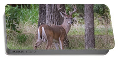 Large Buck Portable Battery Charger