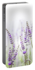 Lavender Flower In The Garden,park,backyard,meadow Blossom In Th Portable Battery Charger