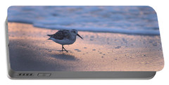 Portable Battery Charger featuring the photograph Least Sandpiper At Dawn by Robert Banach